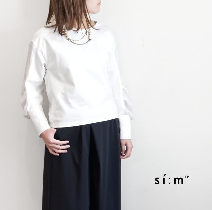 sim_810-65000