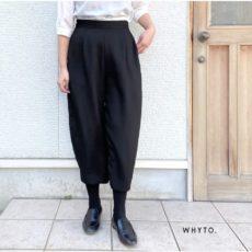 whyto-wht20hpt2
