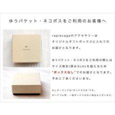 rapiecage_20-071-0-1