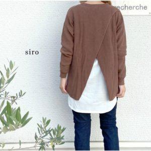 siro-r043101